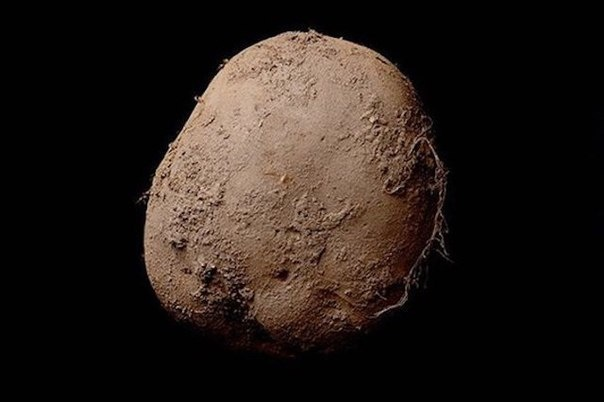 Картофель на черном фоне