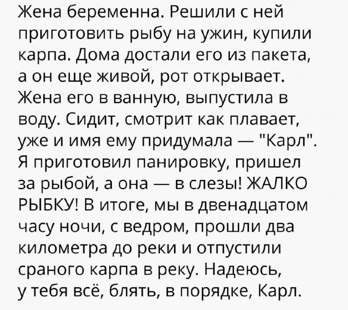 Карп Карл