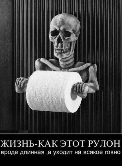 Жизнь как рулон туалетной бумаги