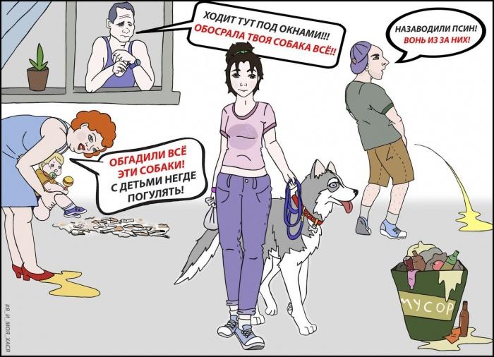 Обосрала твоя собака все