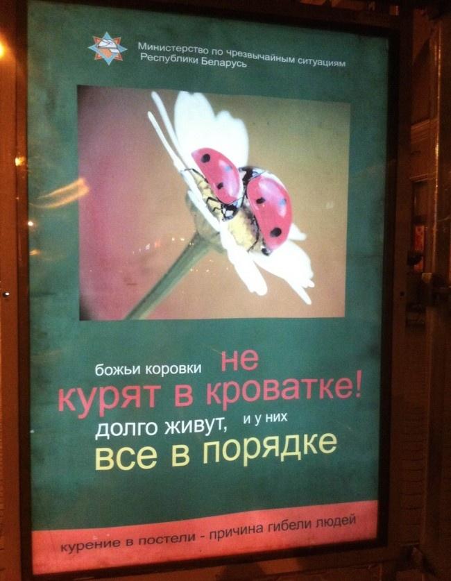 Социалочка от МЧС Белоруси