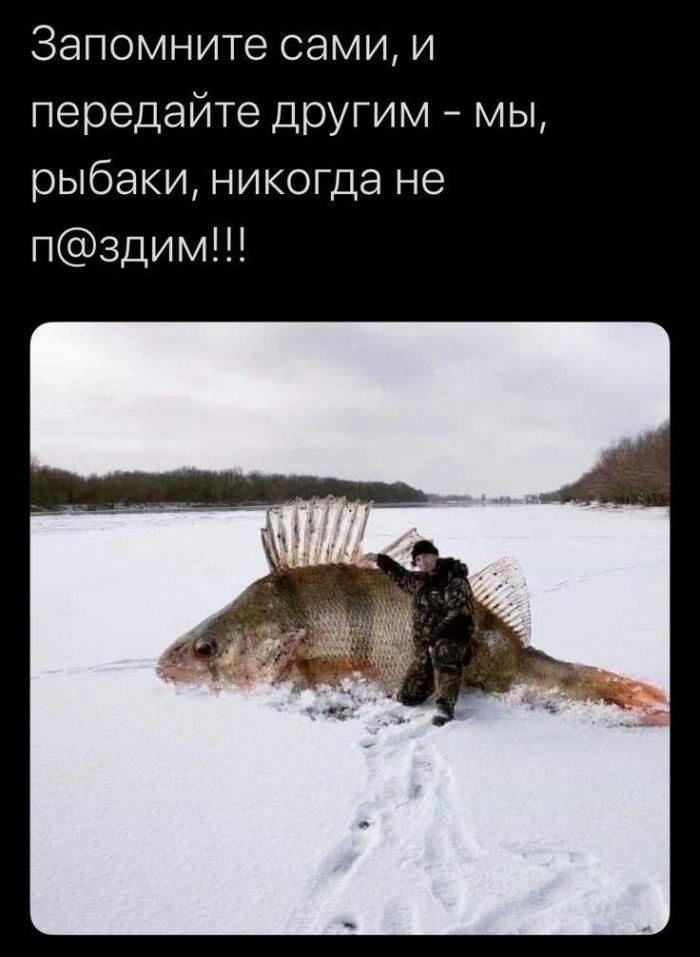 Рыбаки не врут