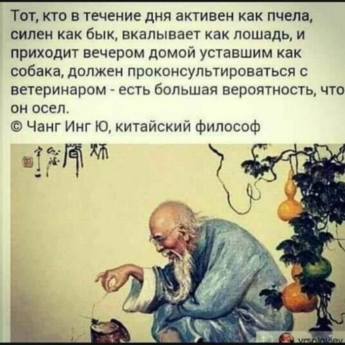 Вот такая философия