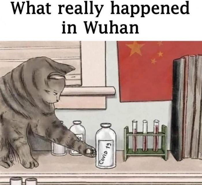 Что действительно произошло в Ухане