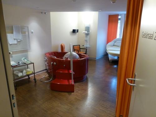 Родильная палата в Швейцарии