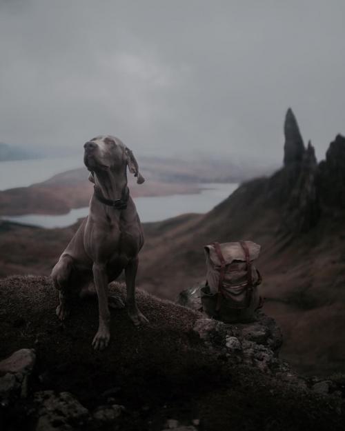 Мрачная Шотландия