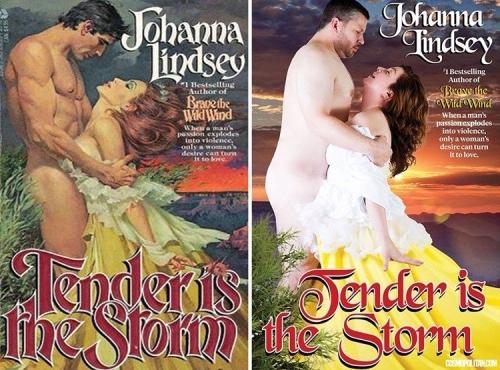Воссозданные обложки любовных романов