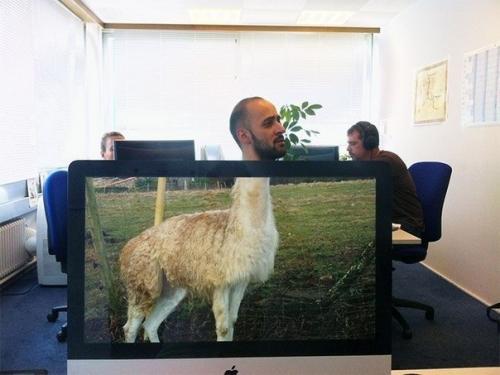 Когда в офисе очень скучно