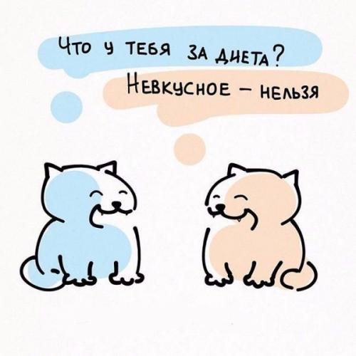Мотивация по кошачьи