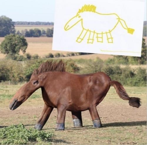 Животные которых мы когда то рисовали