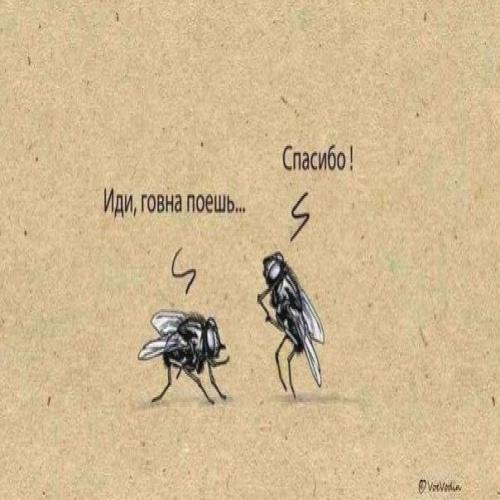 Переведите на человечий ?