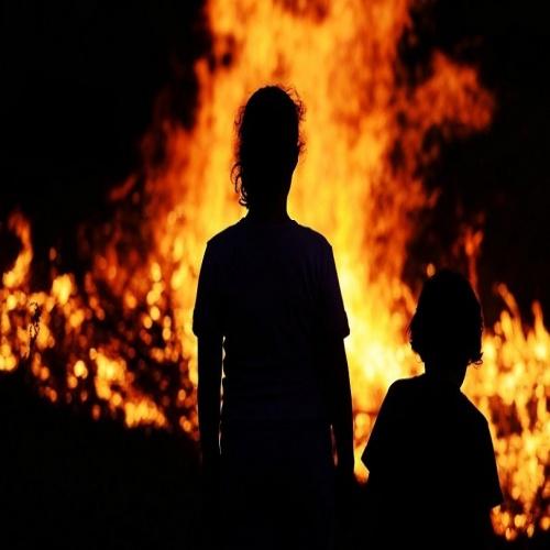 А вы бы кого спасали при пожаре?